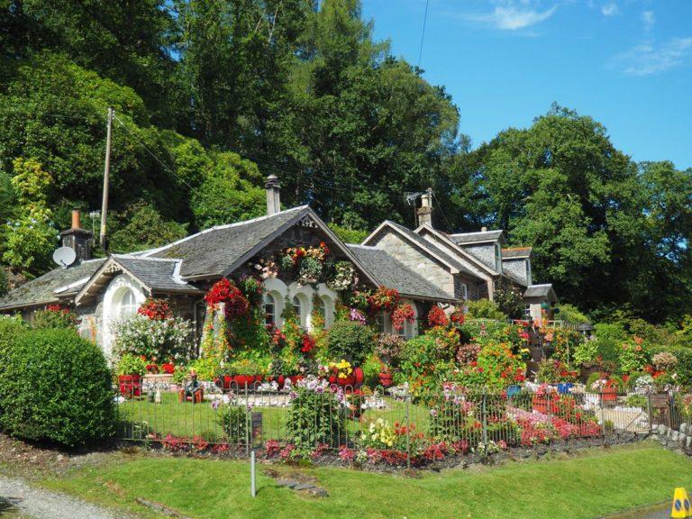 Zaplanuj piękny ogród i czerp z niego korzyści